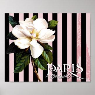 Parisian Magnolia IV white magnolia art print