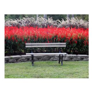 Park Bench 9779 Postcard