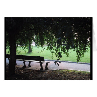 Park Bench Greeting Cards