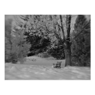 Park Bench in Winter Postcard
