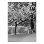 Park Bench Print