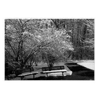 Park Benches in Snow 2 BW Poster