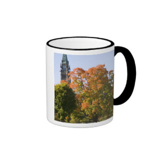 Park beside the Parliment Building in Ottawa, Mugs