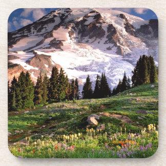 Park Blooming Wildflowers Rainier Beverage Coaster