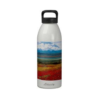Park Brilliant Colors Of Denali Alaska Water Bottles