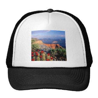 Park Claret Cup Cactus Grand Canyon Trucker Hats