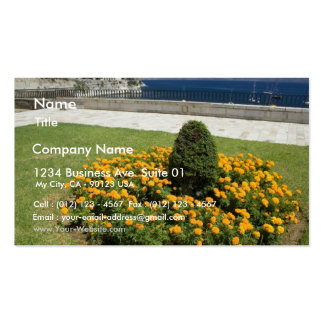 Park In Corfu Town In Greece Business Card