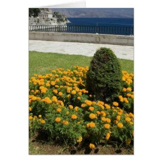 Park In Corfu Town In Greece Card