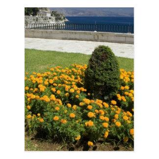 Park In Corfu Town In Greece Postcard