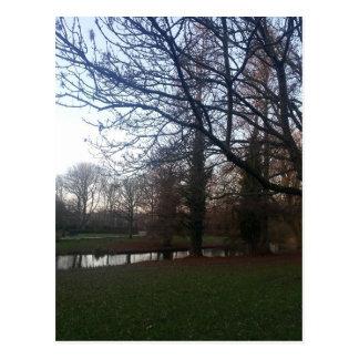 Park in the Netherlands Postcard