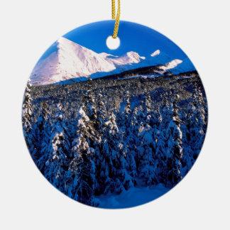 Park Kenai Ains Canyon Creek Alaska Christmas Ornaments