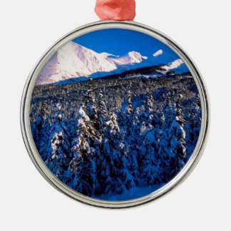 Park Kenai Ains Canyon Creek Alaska Ornament