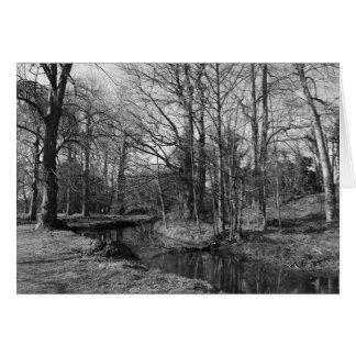 Park Landscape - Bute Park, Cardiff Greeting Card