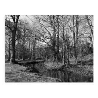 Park Landscape - Bute Park, Cardiff Postcard
