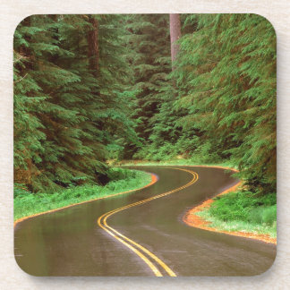 Park Lush Winding Road Olympic Drink Coasters