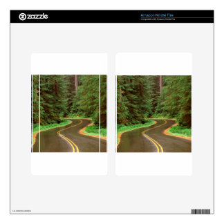 Park Lush Winding Road Olympic Kindle Fire Decals