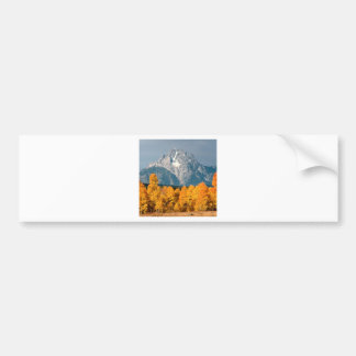 Park Moran In Autumn Wyoming Bumper Sticker