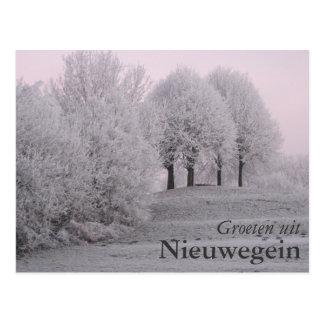 Park Oudegein Post Cards