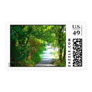 Park Pathway  Postage Stamp