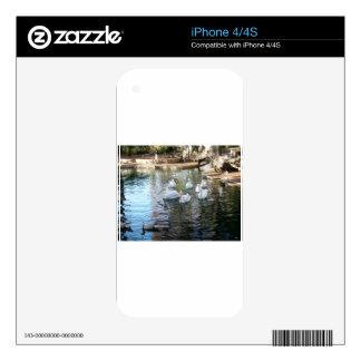Park Pond Skins For iPhone 4