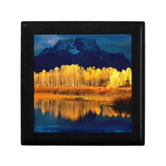 Park Quaking Aspen Moran Grand Tetons Wyoming Gift Box