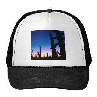 Park Saguaro Trucker Hat