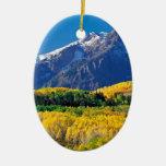 Park Sneffels Uncompahgre Forest Colorado Christmas Ornaments