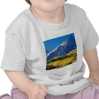 Park Sneffels Uncompahgre Forest Colorado Tee Shirt