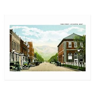 Park Street, Livingston, Montana Postcard