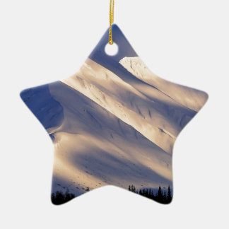 Park Whispering Ain Summit Lake Kenai Alaska Christmas Ornaments