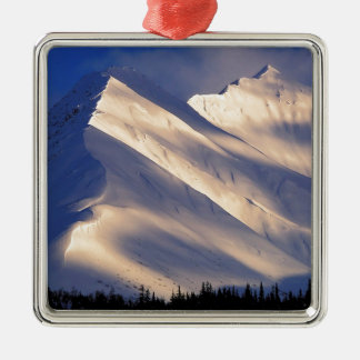 Park Whispering Ain Summit Lake Kenai Alaska Christmas Tree Ornament
