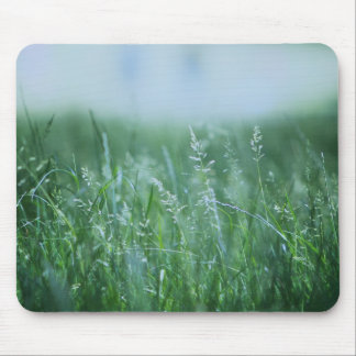 Park with green detail mouse pad