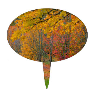 Park with tree lined maple trees in peak fall colo cake topper