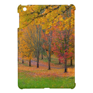 Park with tree lined maple trees in peak fall colo case for the iPad mini