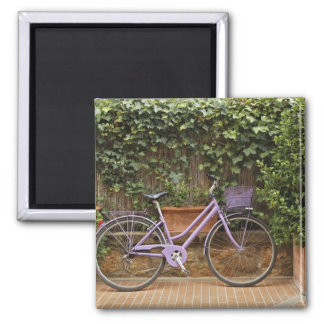 Parked bicycle, Pienza, Italy, Tuscany Magnet