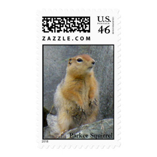 Parkee Squirrel Stamps
