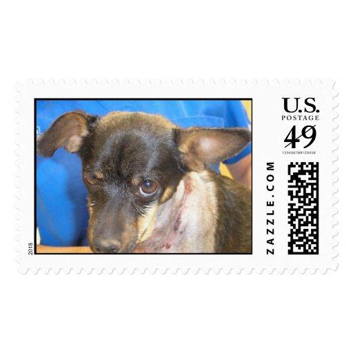 Parker1 Stamp