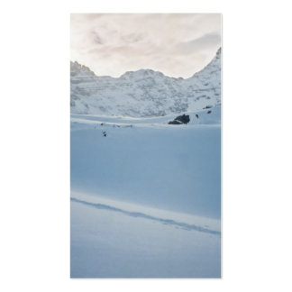 Parker Ridge Banff Park Icefields Alberta Canada Business Cards