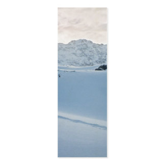 Parker Ridge Banff Park Icefields Alberta Canada Business Card Template