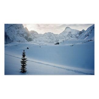 Parker Ridge Banff Park Icefields Alberta Canada Business Card