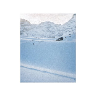 Parker Ridge Banff Park Icefields Alberta Canada Stretched Canvas Print