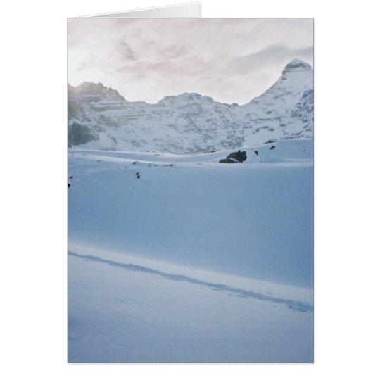 Parker Ridge Banff Park Icefields Alberta Canada Card