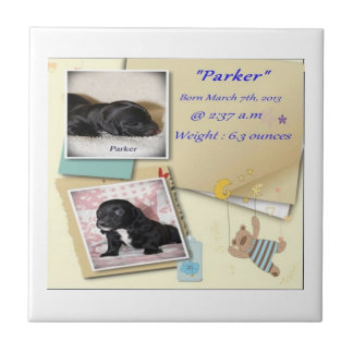 Parkers Birth Certificate Small Square Tile