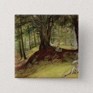 Parkhurst Woods, Abinger, Surrey Button