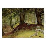 Parkhurst Woods, Abinger, Surrey Greeting Card