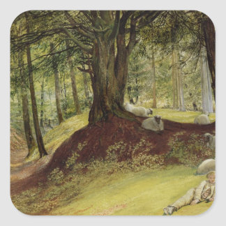 Parkhurst Woods, Abinger, Surrey Square Sticker