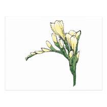 Parkinsons Therapeutic Art - Yellow Freesia Postcard