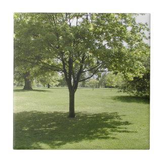 Parkland Tile
