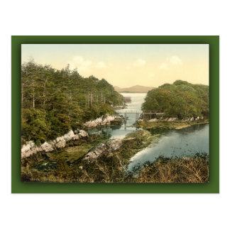 Parknasilla. County Kerry, Ireland Cards