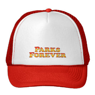 Parks Forever - Clothes Only Mesh Hat